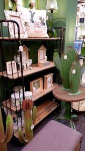 cactus HOMI MILANO